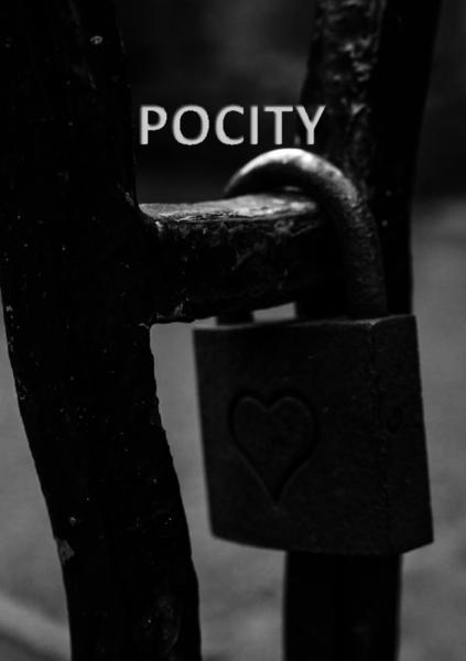 Pocity